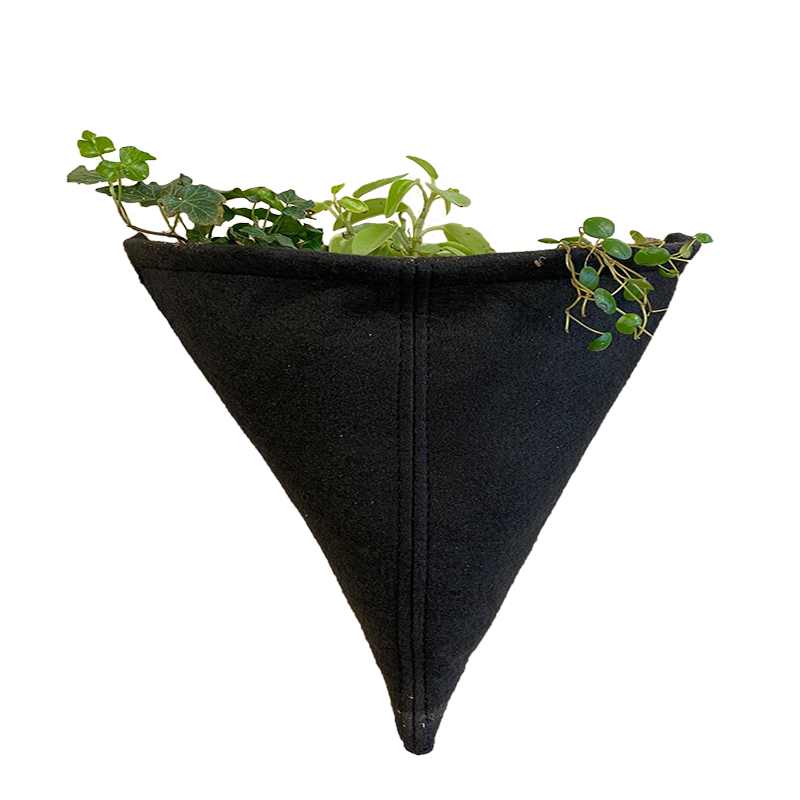 Prototype Living Wall System 10